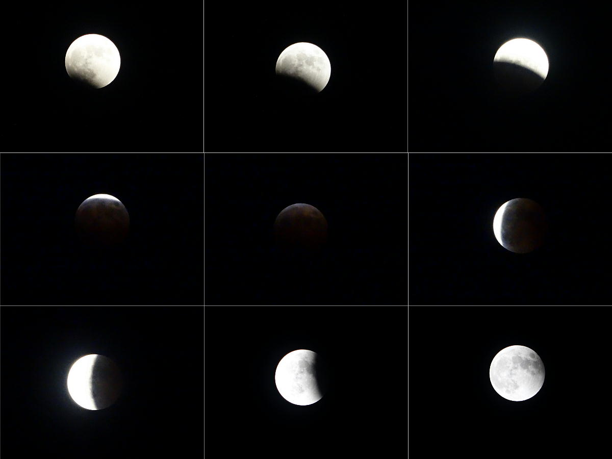 20141008皆既月食.jpg